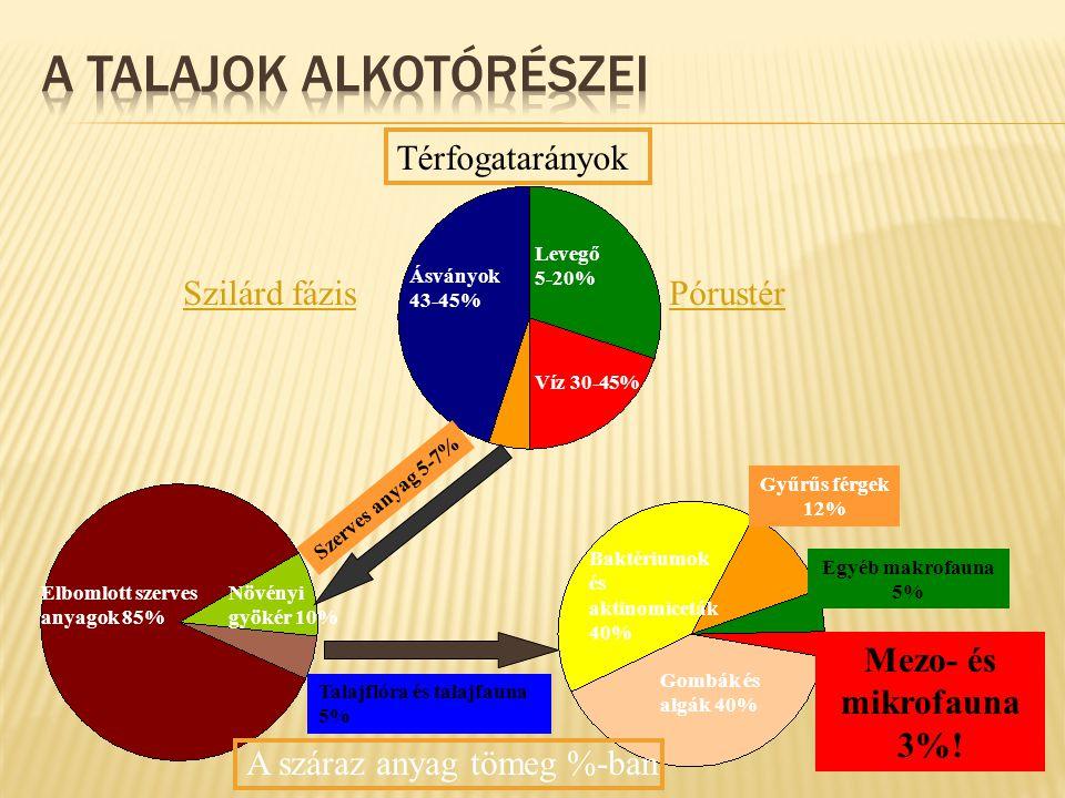 Térfogatarányok Szilárd fázisPórustér Ásványok 43-45% Levegő 5-20% Víz 30-45% Szerves anyag 5-7% Elbomlott szerves anyagok 85% Növényi gyökér 10% Talajflóra és talajfauna 5% Baktériumok és aktinomiceták 40% Gombák és algák 40% Gyűrűs férgek 12% Egyéb makrofauna 5% Mezo- és mikrofauna 3%.
