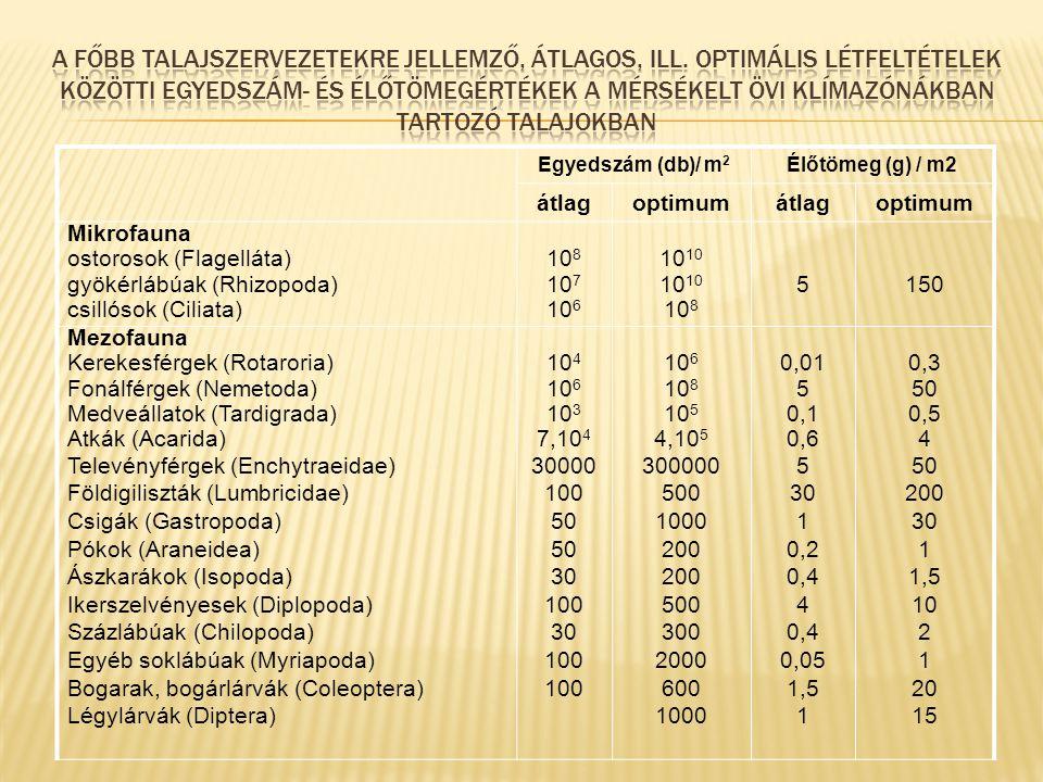 Egyedszám (db)/ m 2 Élőtömeg (g) / m2 átlagoptimumátlagoptimum Mikrofauna ostorosok (Flagelláta) gyökérlábúak (Rhizopoda) csillósok (Ciliata) 10 8 10 7 10 61010 10 8 5150 Mezofauna Kerekesférgek (Rotaroria) Fonálférgek (Nemetoda) Medveállatok (Tardigrada) Atkák (Acarida) Televényférgek (Enchytraeidae) Földigiliszták (Lumbricidae) Csigák (Gastropoda) Pókok (Araneidea) Ászkarákok (Isopoda) Ikerszelvényesek (Diplopoda) Százlábúak (Chilopoda) Egyéb soklábúak (Myriapoda) Bogarak, bogárlárvák (Coleoptera) Légylárvák (Diptera) 10 4 10 6 10 3 7,10 4 30000 100 50 30 100 30 100 10 6 10 8 10 5 4,10 5 300000 500 1000 200 500 300 2000 600 1000 0,01 5 0,1 0,6 5 30 1 0,2 0,4 4 0,4 0,05 1,5 1 0,3 50 0,5 4 50 200 30 1 1,5 10 2 1 20 15