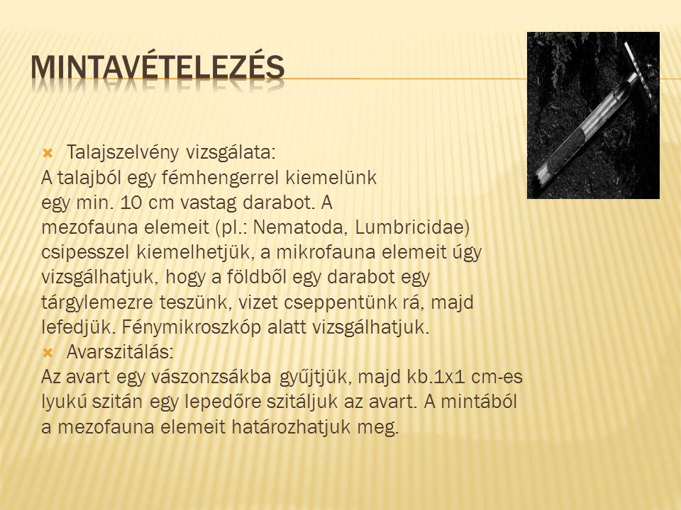 Határozókönyv segítségével: Papp László: Zootaxonómia (1997, Magyar Természettudományi Múzeum-Dabas-Jegyzet Kft.) Szükséges eszközök: Fénymikroszkóp Lupe (nagyító) Csipesz Petri-csésze Tárgylemez, fedőlemez