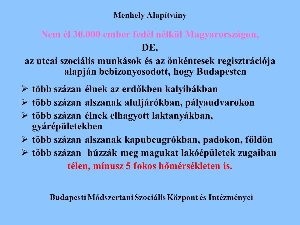 Menhely Alapítvány Nem él 30.000 ember fedél nélkül Magyarországon, DE, az utcai szociális munkások és az önkéntesek regisztrációja alapján bebizonyos