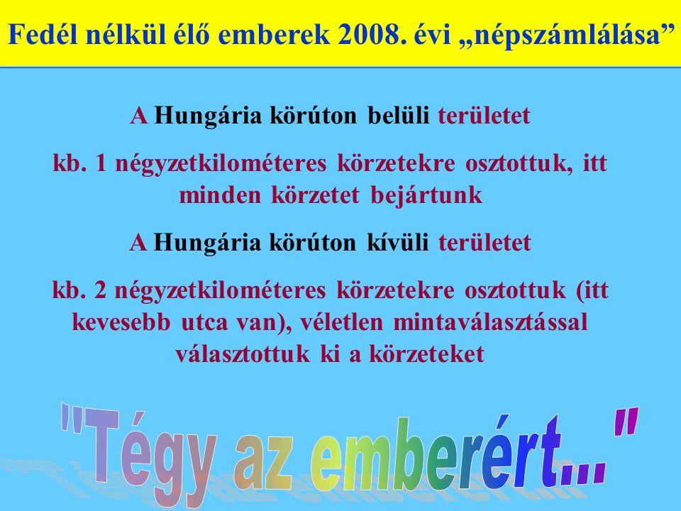 """Fedél nélkül élő emberek 2008. évi """"népszámlálása A Hungária körúton belüli területet kb."""