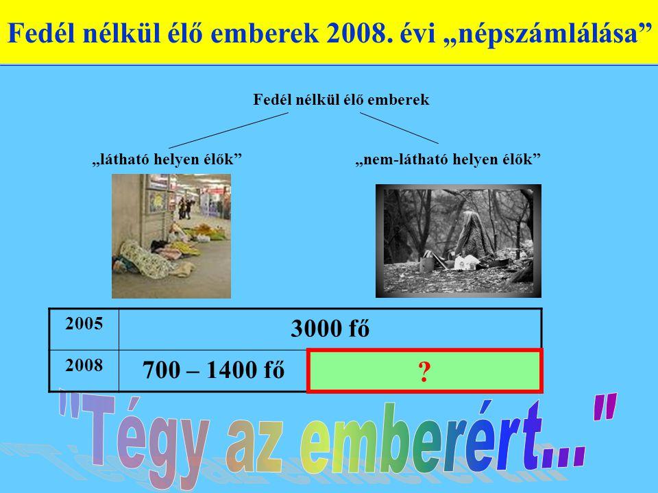 Fedél nélkül élő emberek 2008.