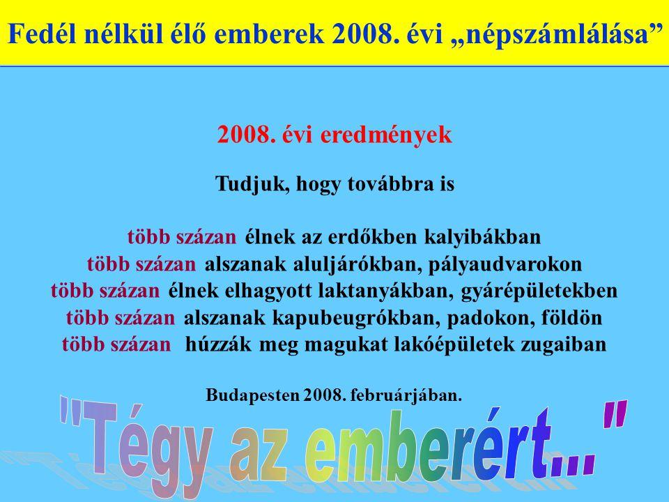 """Fedél nélkül élő emberek 2008.évi """"népszámlálása 2008."""