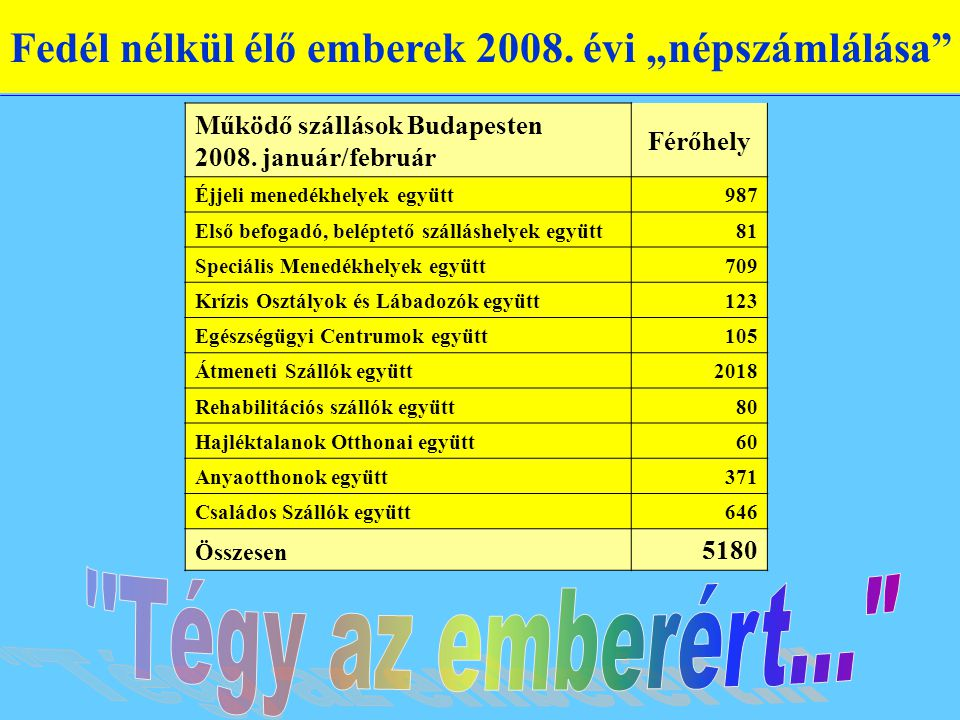 """Fedél nélkül élő emberek 2008. évi """"népszámlálása Működő szállások Budapesten 2008."""