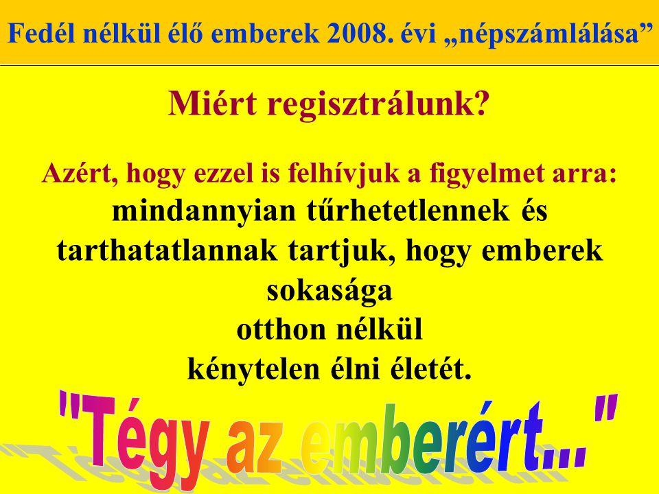 """Fedél nélkül élő emberek 2008.évi """"népszámlálása Miért regisztrálunk."""