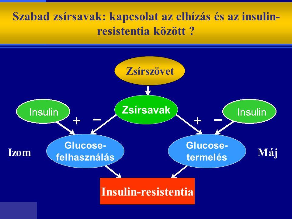 Szabad zsírsavak: kapcsolat az elhízás és az insulin- resistentia között ? Zsírszövet Zsírsavak Glucose- felhasználás Glucose- termelés Insulin-resist