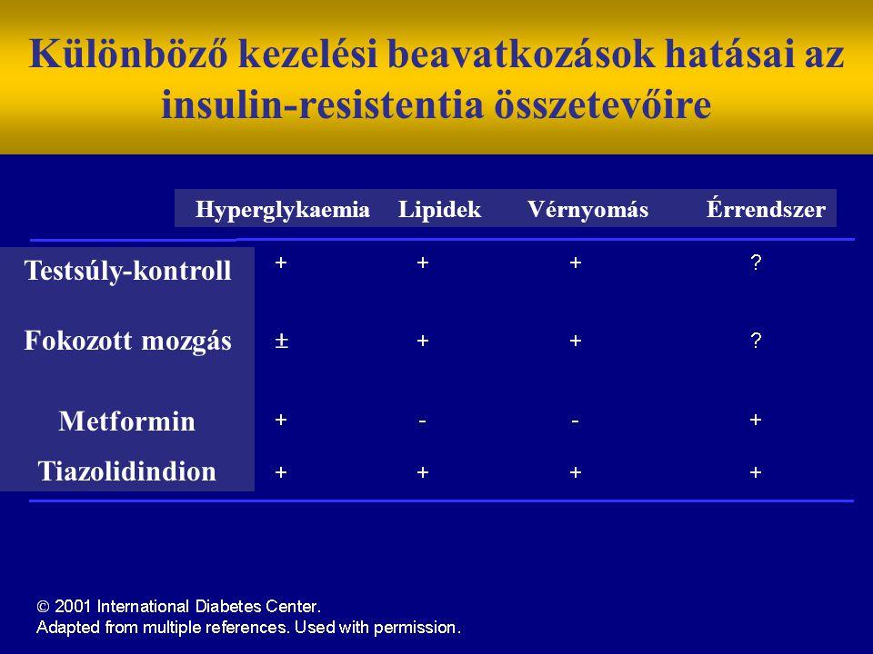Testsúly-kontroll Fokozott mozgás Metformin Tiazolidindion Különböző kezelési beavatkozások hatásai az insulin-resistentia összetevőire Hyperglykaemia Lipidek Vérnyomás Érrendszer