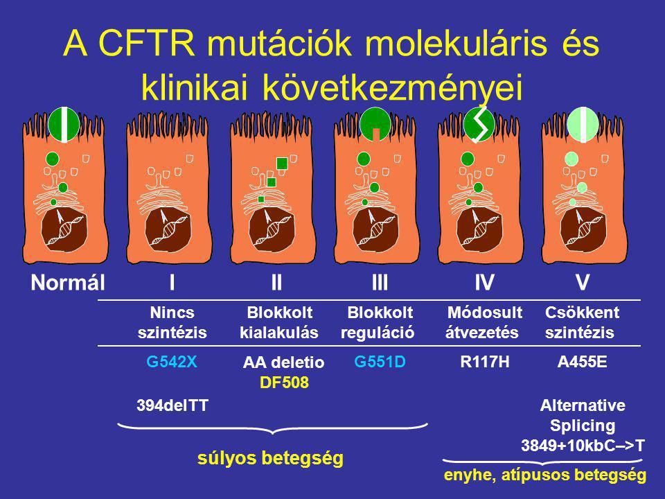 A CFTR mutációk molekuláris és klinikai következményei NormálIIIIIIIVV G542X 394delTT G551DR117H Alternative Splicing 3849+10kbC–>T A455E Nincs szintézis Blokkolt kialakulás Módosult átvezetés Blokkolt reguláció Csökkent szintézis súlyos betegség enyhe, atípusos betegség AA deletio DF508