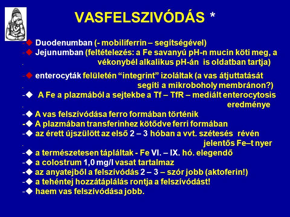 VASFELSZIVÓDÁS * -  Duodenumban (- mobiliferrin – segítségével) -  Jejunumban (feltételezés: a Fe savanyú pH-n mucin köti meg, a. vékonybél alkaliku
