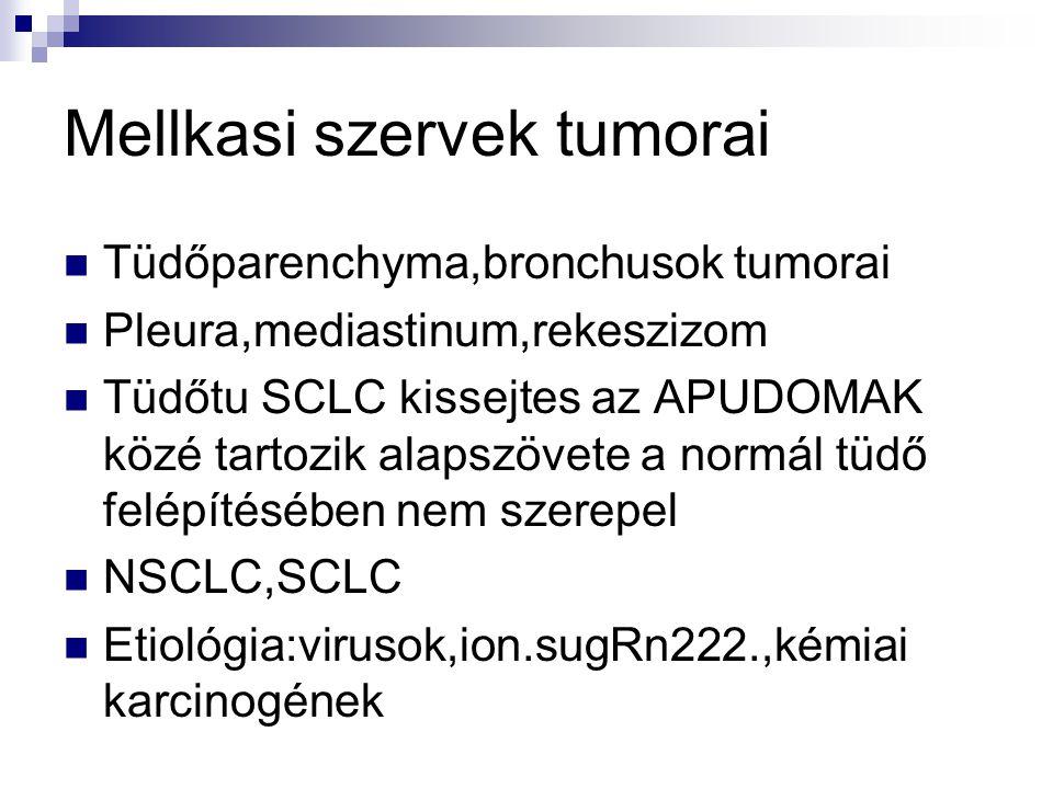 Mellkasi szervek tumorai Tüdőparenchyma,bronchusok tumorai Pleura,mediastinum,rekeszizom Tüdőtu SCLC kissejtes az APUDOMAK közé tartozik alapszövete a normál tüdő felépítésében nem szerepel NSCLC,SCLC Etiológia:virusok,ion.sugRn222.,kémiai karcinogének
