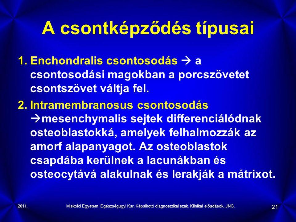 2011.Miskolci Egyetem, Egészségügyi Kar, Képalkotó diagnosztikai szak. Klinikai előadások.,JNG. 21 A csontképződés típusai 1.Enchondralis csontosodás