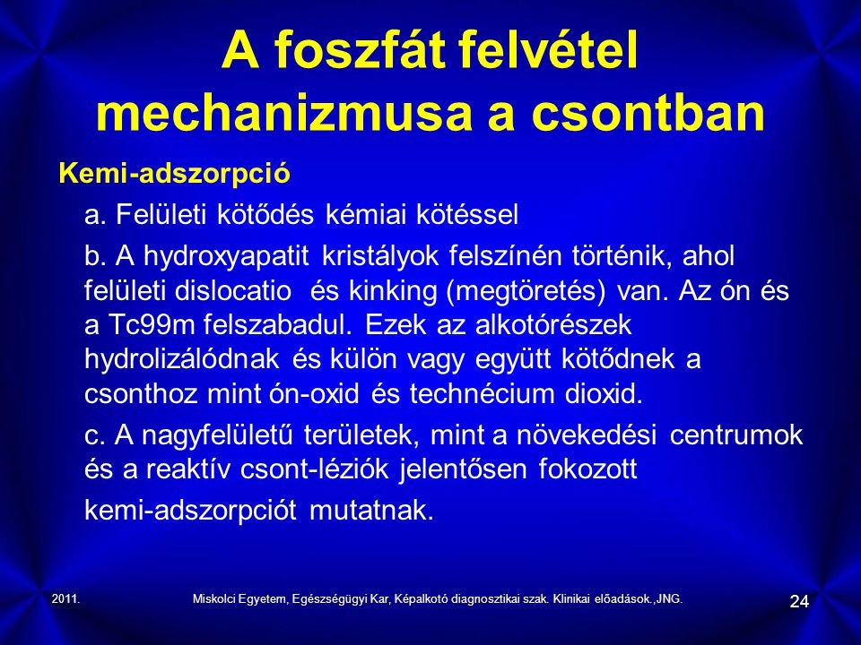 2011.Miskolci Egyetem, Egészségügyi Kar, Képalkotó diagnosztikai szak. Klinikai előadások.,JNG. 24 A foszfát felvétel mechanizmusa a csontban Kemi-ads