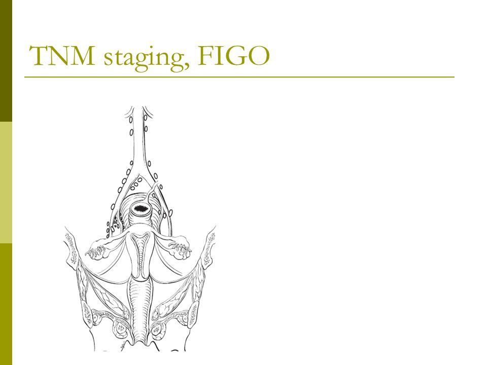 TNM staging, FIGO