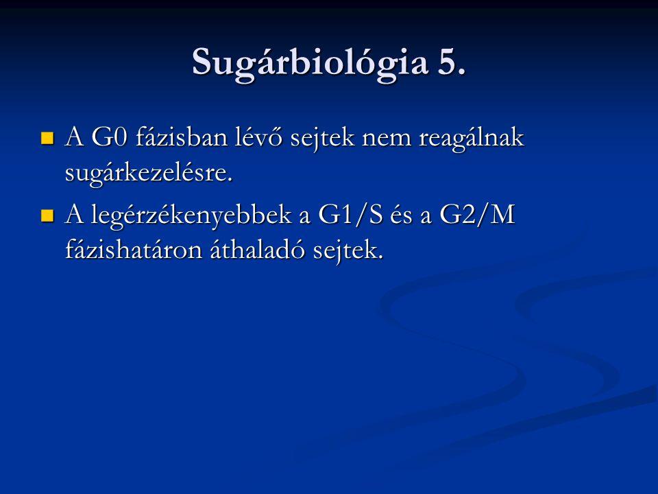 """Sugárérzékeny daganatok A seminomák és a dysgerminomák 20-30 Gy-jel A seminomák és a dysgerminomák 20-30 Gy-jel A bőrtumorok, lymphomák 40-50 Gy-jel A bőrtumorok, lymphomák 40-50 Gy-jel A többi solid tumor 60-70 Gy-jel """"gyógyítható A többi solid tumor 60-70 Gy-jel """"gyógyítható"""