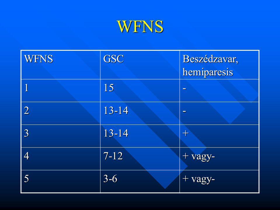WFNS WFNSGSC Beszédzavar, hemiparesis 115- 213-14- 313-14+ 47-12 + vagy- 53-6