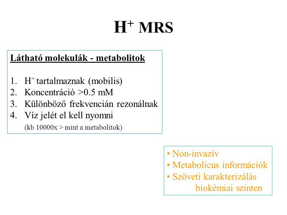 H + MRS Látható molekulák - metabolitok 1.H + tartalmaznak (mobilis) 2.Koncentráció >0.5 mM 3.Különböző frekvencián rezonálnak 4.Víz jelét el kell nyo