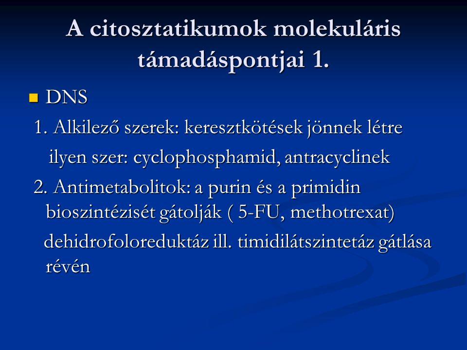 A citosztatikumok molekuláris támadáspontjai 1. DNS DNS 1. Alkilező szerek: keresztkötések jönnek létre 1. Alkilező szerek: keresztkötések jönnek létr
