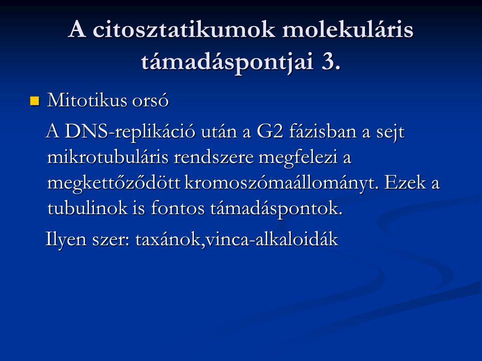 A citosztatikumok molekuláris támadáspontjai 3. Mitotikus orsó Mitotikus orsó A DNS-replikáció után a G2 fázisban a sejt mikrotubuláris rendszere megf