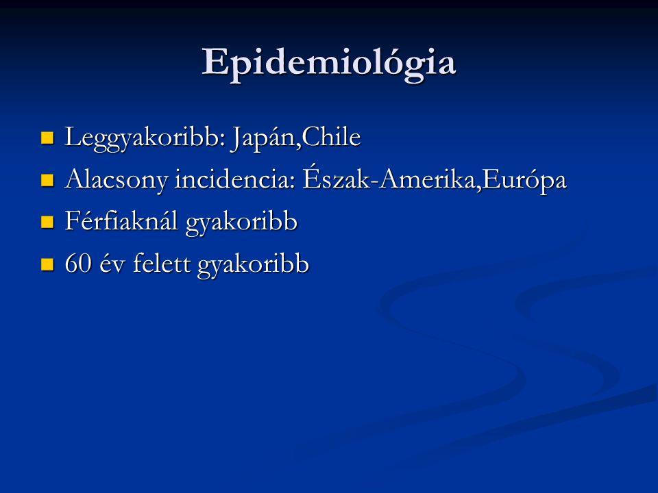 Epidemiológia Leggyakoribb: Japán,Chile Leggyakoribb: Japán,Chile Alacsony incidencia: Észak-Amerika,Európa Alacsony incidencia: Észak-Amerika,Európa Férfiaknál gyakoribb Férfiaknál gyakoribb 60 év felett gyakoribb 60 év felett gyakoribb