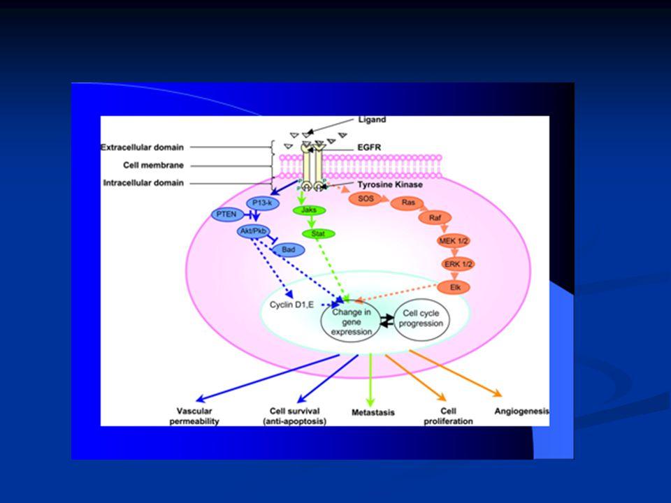 Paraneopláziák 1.Rosszindulatú daganat mellett jelentkező kórképek, tünetek.