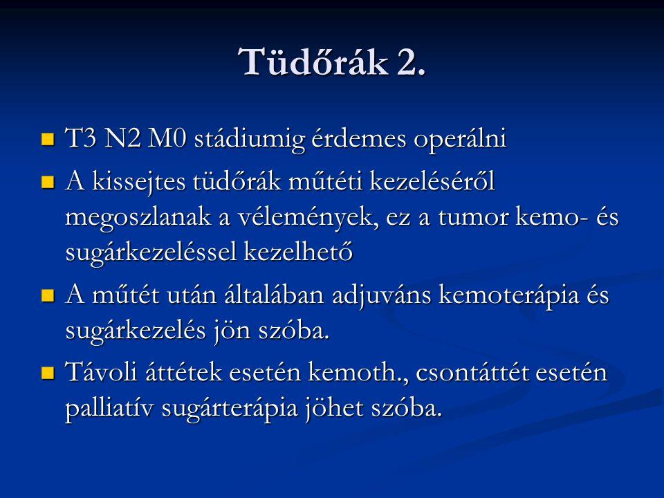 Tüdőrák 2.