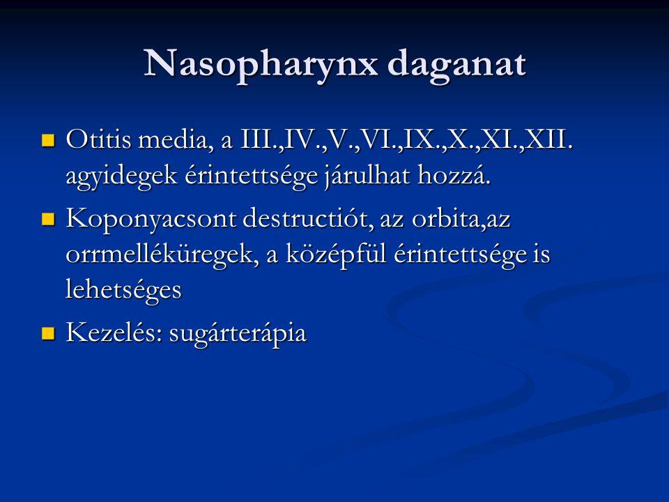 Mesopharynx (oropharynx) daganata Lágyszájpad,tonsillák,nyelv hátsó harmada,garatfal Lágyszájpad,tonsillák,nyelv hátsó harmada,garatfal Gyakori nyirokcsomóáttét Gyakori nyirokcsomóáttét Sebészi és sugárterápia jön szóba, akár kombinálva Sebészi és sugárterápia jön szóba, akár kombinálva Kemoterápia előrehaladott esetekben Kemoterápia előrehaladott esetekben Lymphomák is előfordulhatnak a mesopharynxban Lymphomák is előfordulhatnak a mesopharynxban