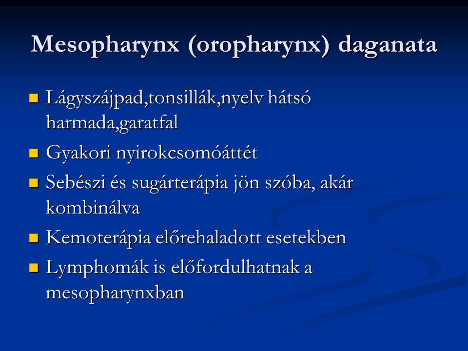 Fej-nyaki daganatok következményei Tracheostoma Tracheostoma Nasogastricus szonda,PEG(percutan endoscopos gastrostoma) Nasogastricus szonda,PEG(percutan endoscopos gastrostoma) Fájdalomcsillapítás Fájdalomcsillapítás