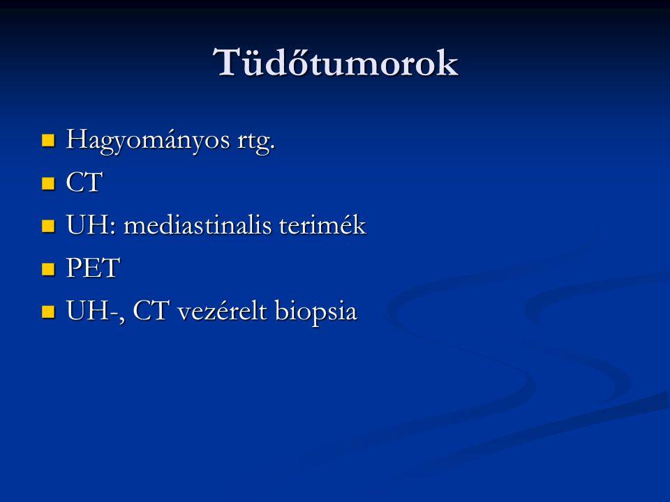 Tüdőtumorok Hagyományos rtg. Hagyományos rtg. CT CT UH: mediastinalis terimék UH: mediastinalis terimék PET PET UH-, CT vezérelt biopsia UH-, CT vezér