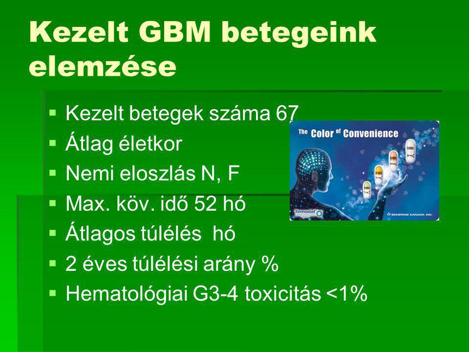 Kezelt GBM betegeink elemzése   Kezelt betegek száma 67   Átlag életkor   Nemi eloszlás N, F   Max.