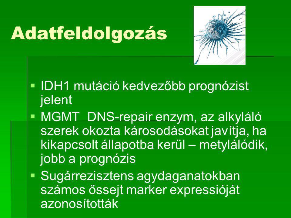 Adatfeldolgozás   IDH1 mutáció kedvezőbb prognózist jelent   MGMT DNS-repair enzym, az alkyláló szerek okozta károsodásokat javítja, ha kikapcsolt állapotba kerül – metylálódik, jobb a prognózis   Sugárrezisztens agydaganatokban számos őssejt marker expressióját azonosították
