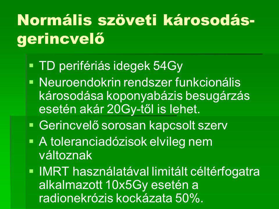 Normális szöveti károsodás- gerincvelő   TD perifériás idegek 54Gy   Neuroendokrin rendszer funkcionális károsodása koponyabázis besugárzás esetén akár 20Gy-től is lehet.