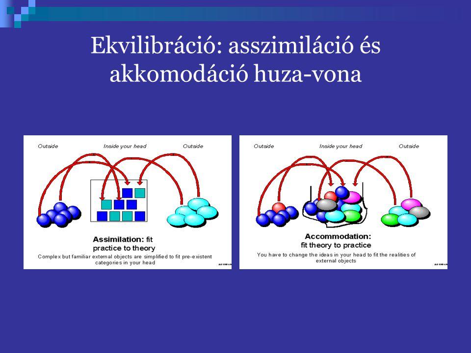 Ekvilibráció: asszimiláció és akkomodáció huza-vona