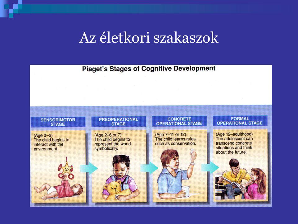 Vigotszkij – Szociális konstruktivizmus a kognitív fejlődés egy állandó mozgásban lévő kettős, belső és külső fejlődés, a szociálistól az egyéni fele és nem fordítva minden felsőrendű pszichikus funkció kétszer jelenik meg a gyermek fejlődésében: először egy kollektív helyzetben egy felnőtt irányítása alatt (mint interpszichikus funkció) és csak másodsorban, mint individuális tevékenység, mint a gyermek egyéni gondolkodásának sajátja (mint intrapszichikus funkció).