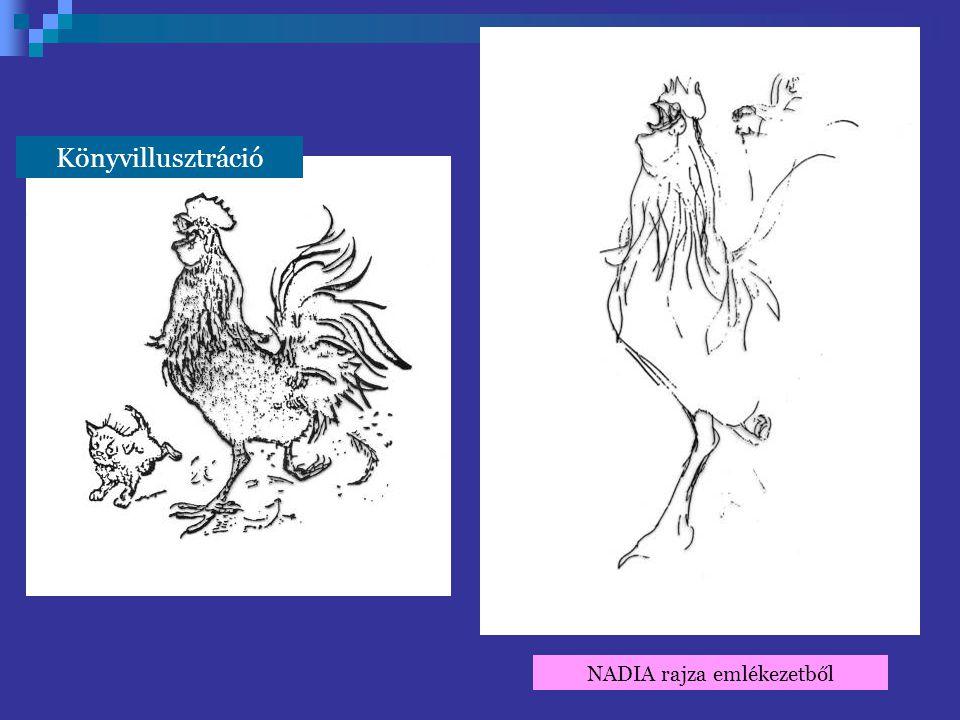 Könyvillusztráció NADIA rajza emlékezetből