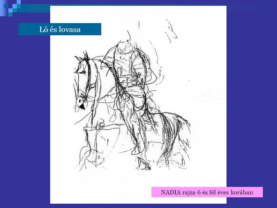 Ló és lovasa NADIA rajza 6 és fél éves korában