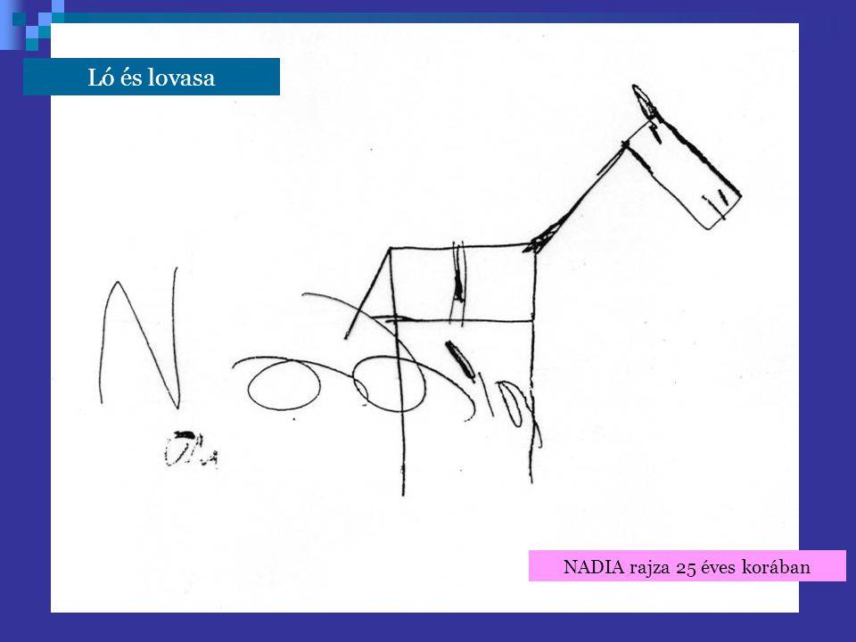 NADIA rajza 25 éves korában Ló és lovasa