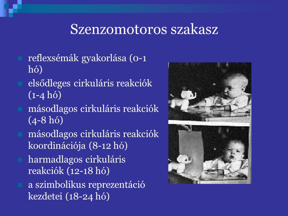 ToM fejlesztés. Mit kell megtanulnia a kisgyermeknek? a külvilág szocializáció  más elmék  nyelv