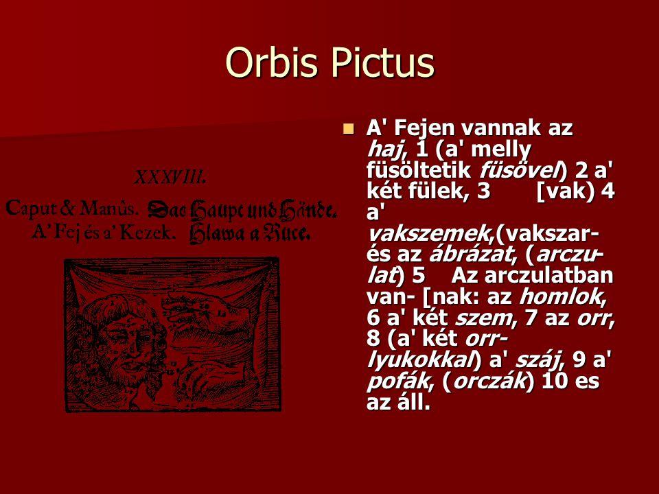 Orbis Pictus A' Fejen vannak az haj, 1 (a' melly füsöltetik füsövel) 2 a' két fülek, 3 [vak) 4 a' vakszemek,(vakszar- és az ábrázat, (arczu- lat) 5 Az