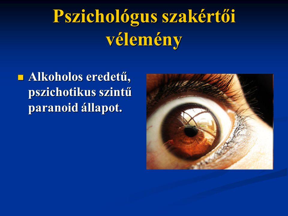 Pszichológus szakértői vélemény Alkoholos eredetű, pszichotikus szintű paranoid állapot. Alkoholos eredetű, pszichotikus szintű paranoid állapot.