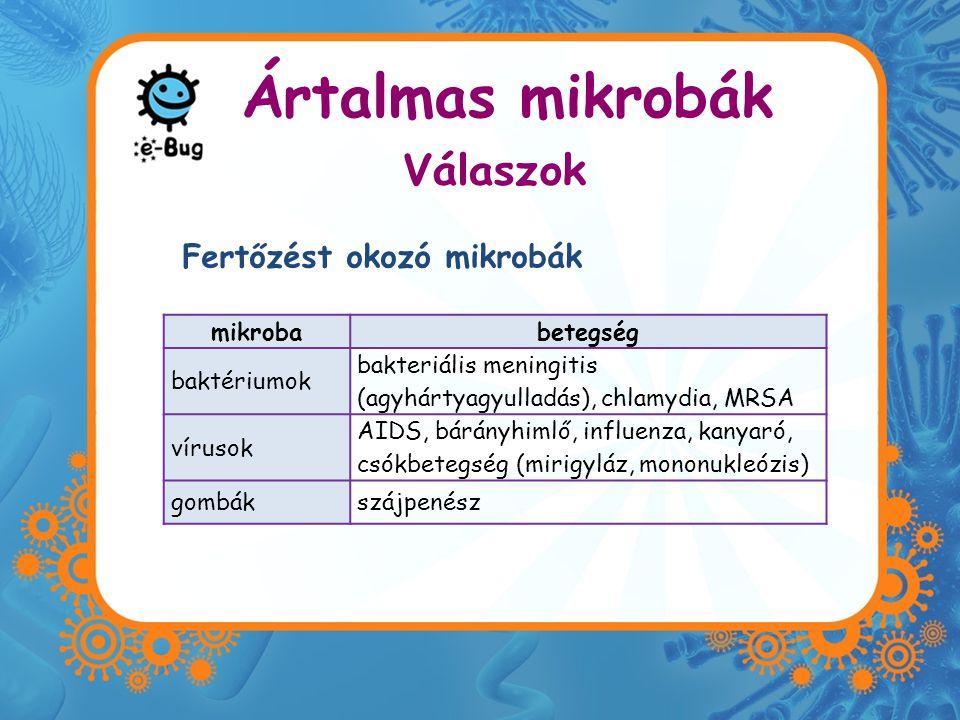 Ártalmas mikrobák mikrobabetegség baktériumok bakteriális meningitis (agyhártyagyulladás), chlamydia, MRSA vírusok AIDS, bárányhimlő, influenza, kanyaró, csókbetegség (mirigyláz, mononukleózis) gombákszájpenész Fertőzést okozó mikrobák