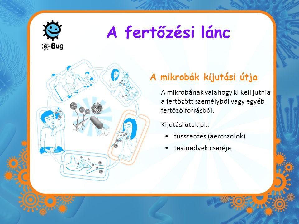 A fertőzési lánc A mikrobák kijutási útja A mikrobának valahogy ki kell jutnia a fertőzött személyből vagy egyéb fertőző forrásból. Kijutási utak pl.: