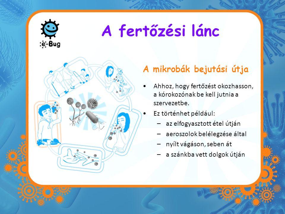 A fertőzési lánc A mikrobák bejutási útja Ahhoz, hogy fertőzést okozhasson, a kórokozónak be kell jutnia a szervezetbe. Ez történhet például: –az elfo