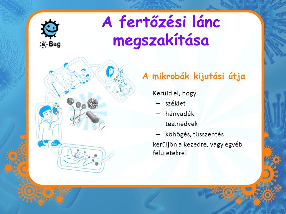 A fertőzési lánc megszakítása A mikrobák kijutási útja Kerüld el, hogy –széklet –hányadék –testnedvek –köhögés, tüsszentés kerüljön a kezedre, vagy eg