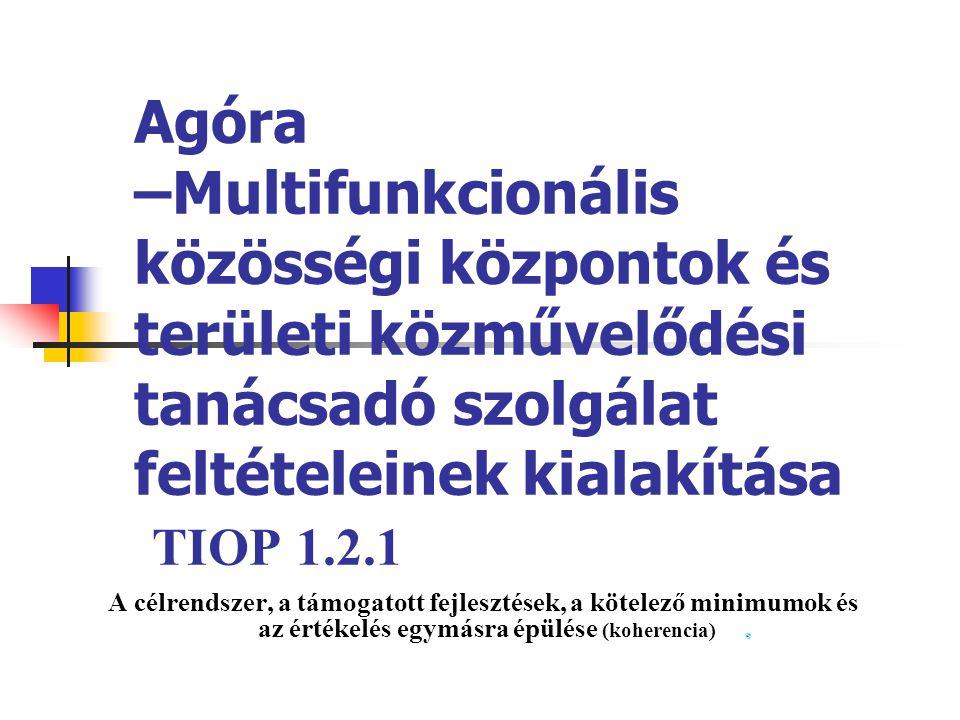 Agóra –Multifunkcionális közösségi központok és területi közművelődési tanácsadó szolgálat feltételeinek kialakítása TIOP 1.2.1 A célrendszer, a támog