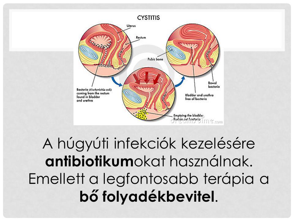 A húgyúti infekciók kezelésére antibiotikum okat használnak.