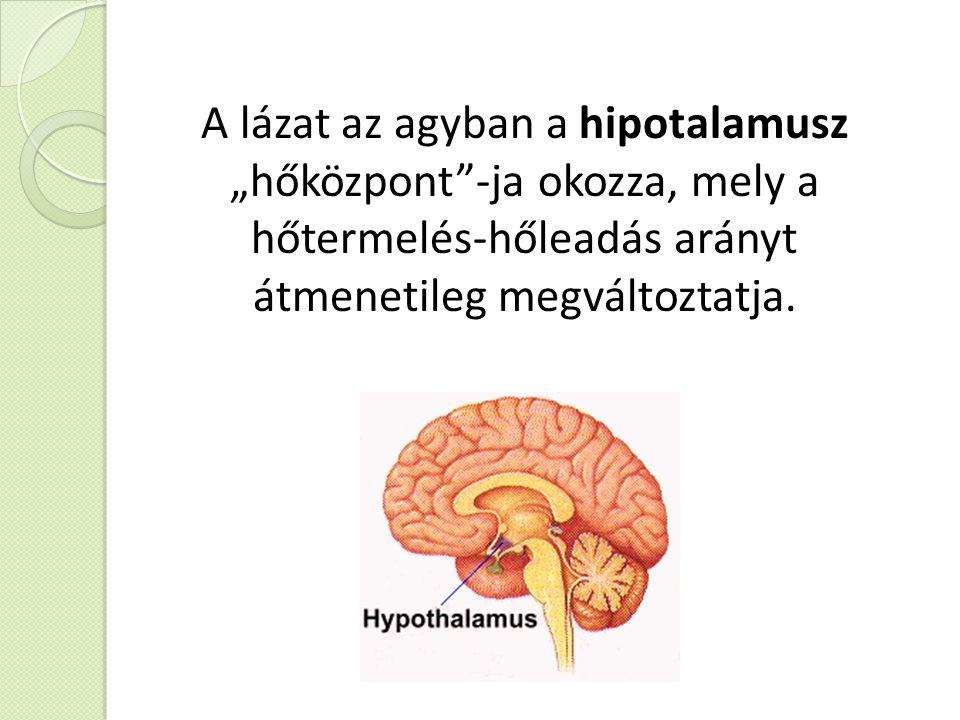 """A lázat az agyban a hipotalamusz """"hőközpont""""-ja okozza, mely a hőtermelés-hőleadás arányt átmenetileg megváltoztatja."""
