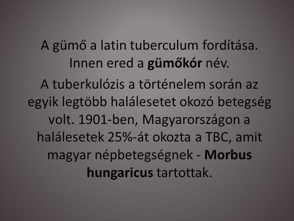 A gümő a latin tuberculum fordítása. Innen ered a gümőkór név. A tuberkulózis a történelem során az egyik legtöbb halálesetet okozó betegség volt. 190