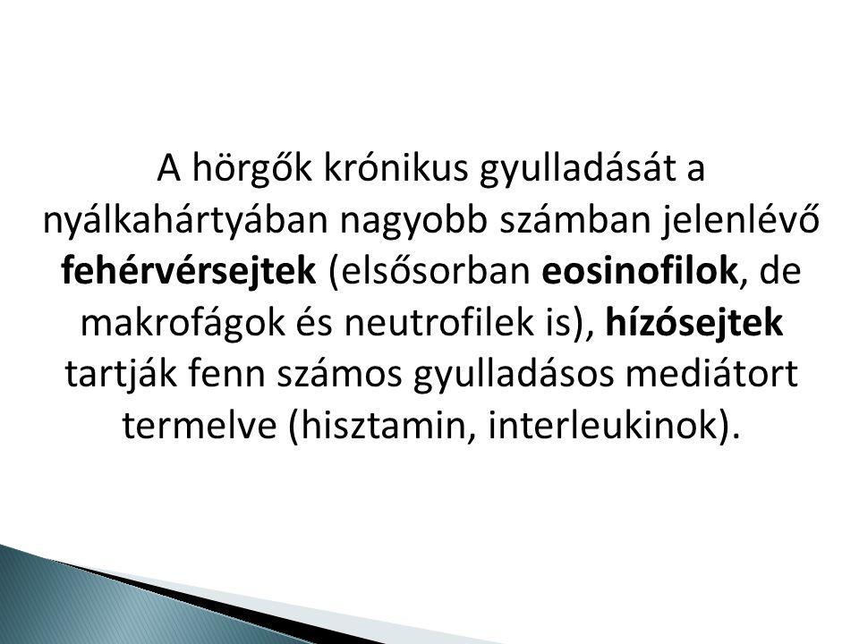 A hörgők krónikus gyulladását a nyálkahártyában nagyobb számban jelenlévő fehérvérsejtek (elsősorban eosinofilok, de makrofágok és neutrofilek is), hízósejtek tartják fenn számos gyulladásos mediátort termelve (hisztamin, interleukinok).