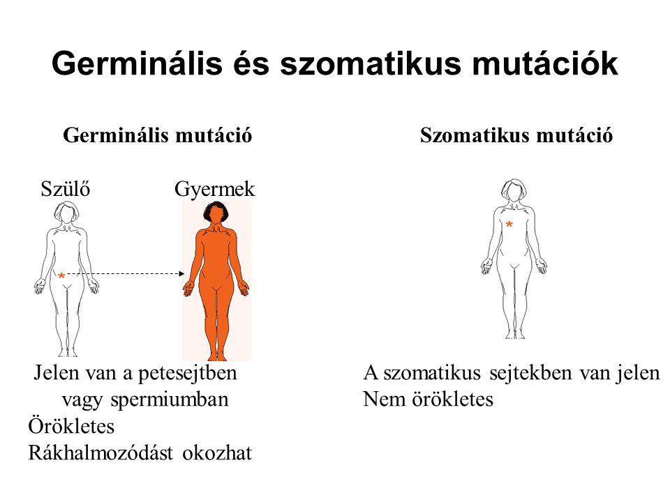 Germinális és szomatikus mutációk Jelen van a petesejtben A szomatikus sejtekben van jelen vagy spermiumbanNem örökletes Örökletes Rákhalmozódást okoz