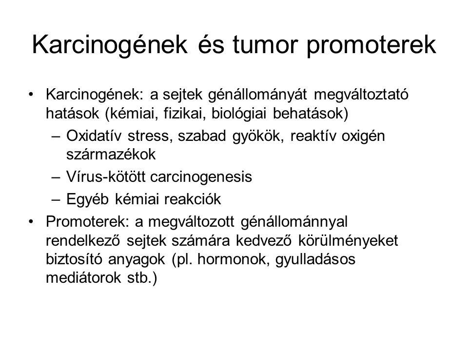 Karcinogének és tumor promoterek Karcinogének: a sejtek génállományát megváltoztató hatások (kémiai, fizikai, biológiai behatások) –Oxidatív stress, s